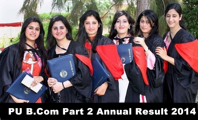 Punjab University PU B.Com Part 2 Annual Result 2014