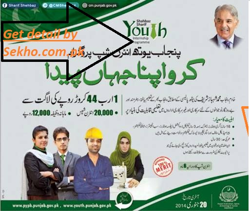 Punjab-Youth-Internship-Program-2014-Online-Registration-and-Detail