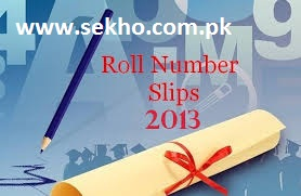 Roll No Slips 8th Class 2014