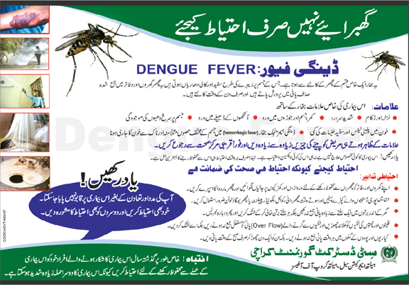 dengue virus pakistan essay Vol 59, no 6, june 2009 390 original article evaluation of two elisa assay kits against rt-pcr for diagnosis of dengue virus infection in a hospital setting in karachi, pakistan.