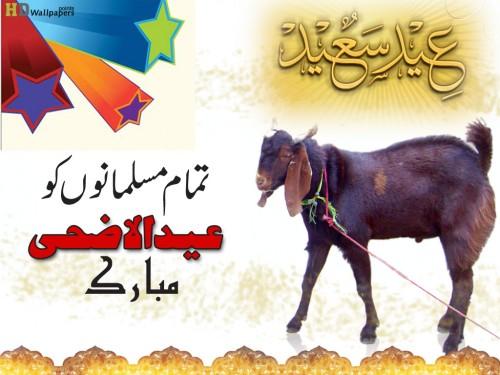 Happy Eid Ul Adha SMS