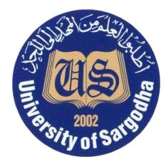 Sargodha University BA BSC Supplementary Result 2017