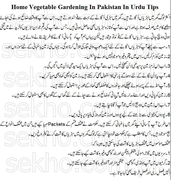 Home Vegetable Gardening In Pakistan In Urdu Tips