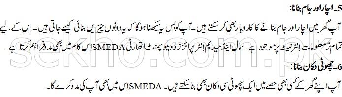 Small Home Based Business Ideas In Pakistan In Urdu
