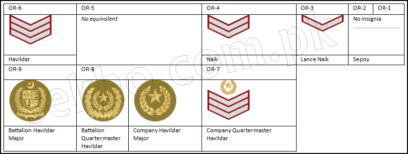 Pakistan Army Ranks And Badges With Salary Pay Scale Non-Commissioned Officers