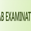 Sahiwal Board 5th And 8th Class Result 2020