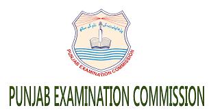 8th Class Result 2021 PEC Punjab Examination Commission