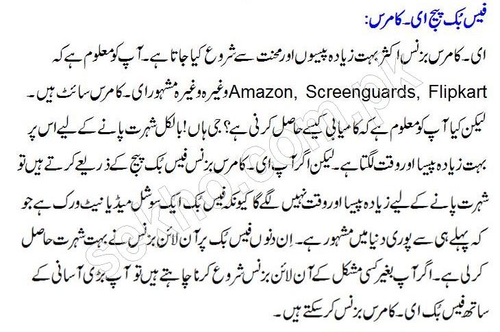Best Online Business Ideas  In Pakistan Urdu
