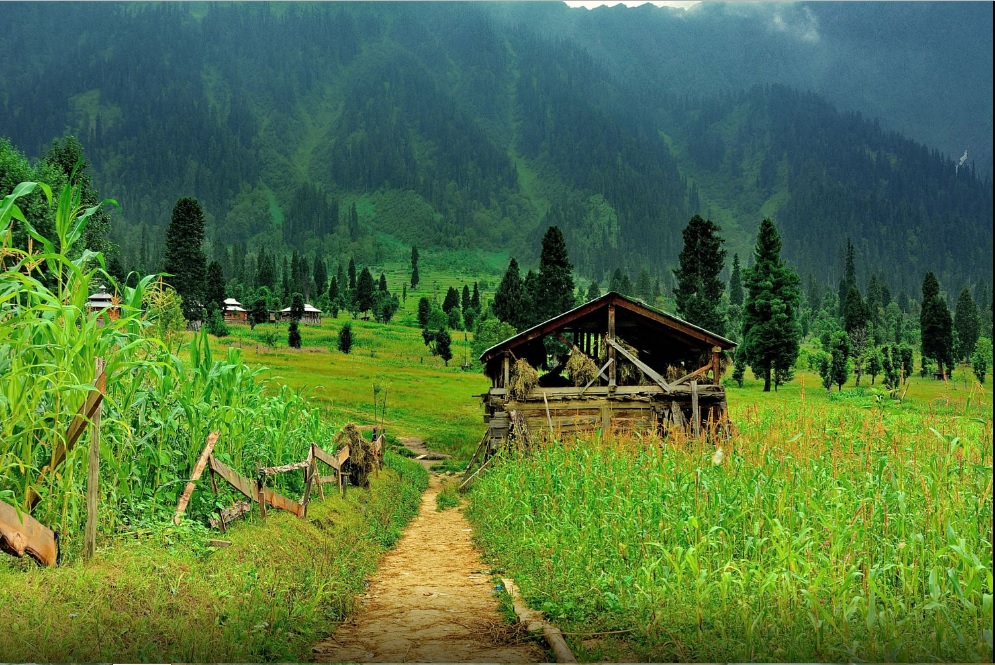 Beautiful Places in Pakistan for Honeymoon