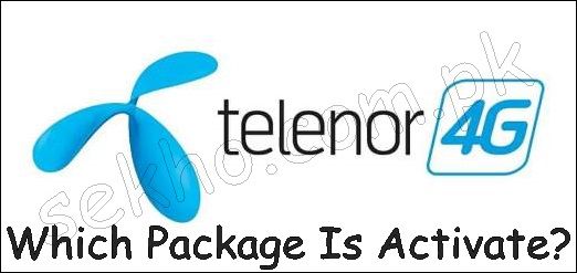 How To Check Which Package Is Activated On Telenor Sim