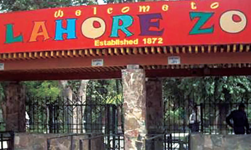 Lahore Zoo Timings, Ticket Price, Location Map
