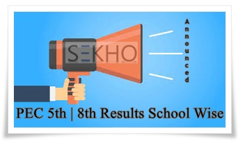 PEC Results 2020 School Wise 5th, 8th Class Announced